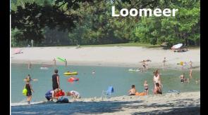Loomeer