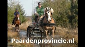 Paardenprovincie